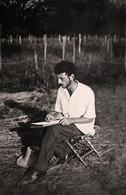 דוד פרלוב-דיוקן